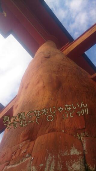 広島ロケ & 厳島神社(≧∇≦)